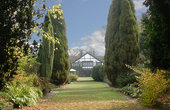One Night May Special - Cisswood House